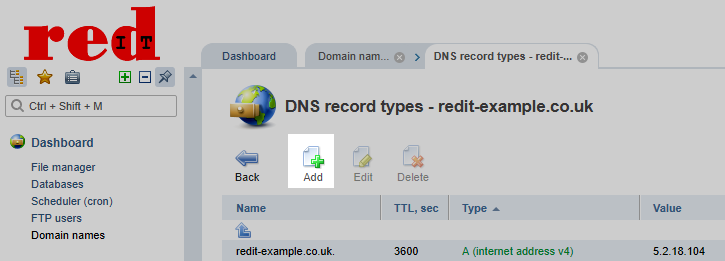 redIT Control Panel Add DNS Record