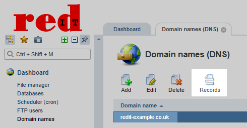 redIT Control Panel Domain Records